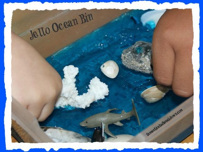 Jello Ocean Bin 3